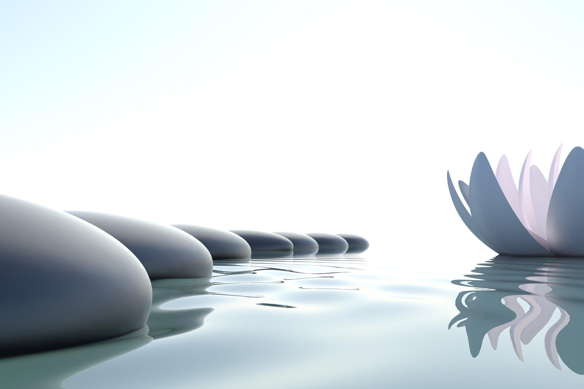 Zen flower loto near stones on white background